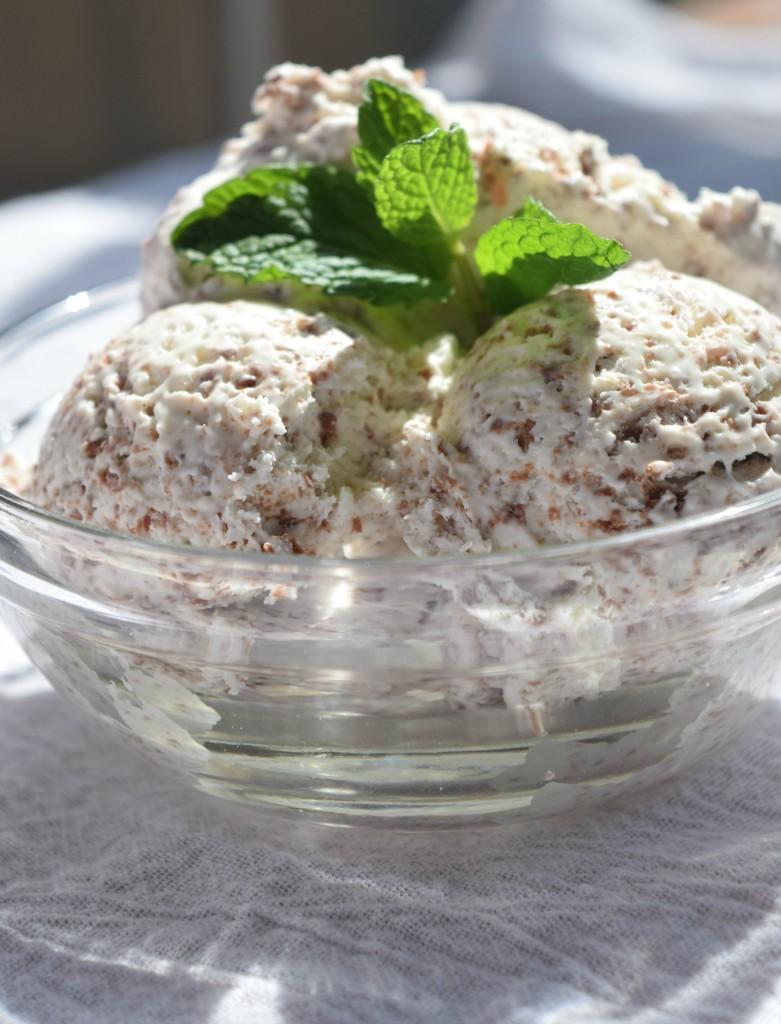 Mint Chocolate Chip No-Churn Ice Cream
