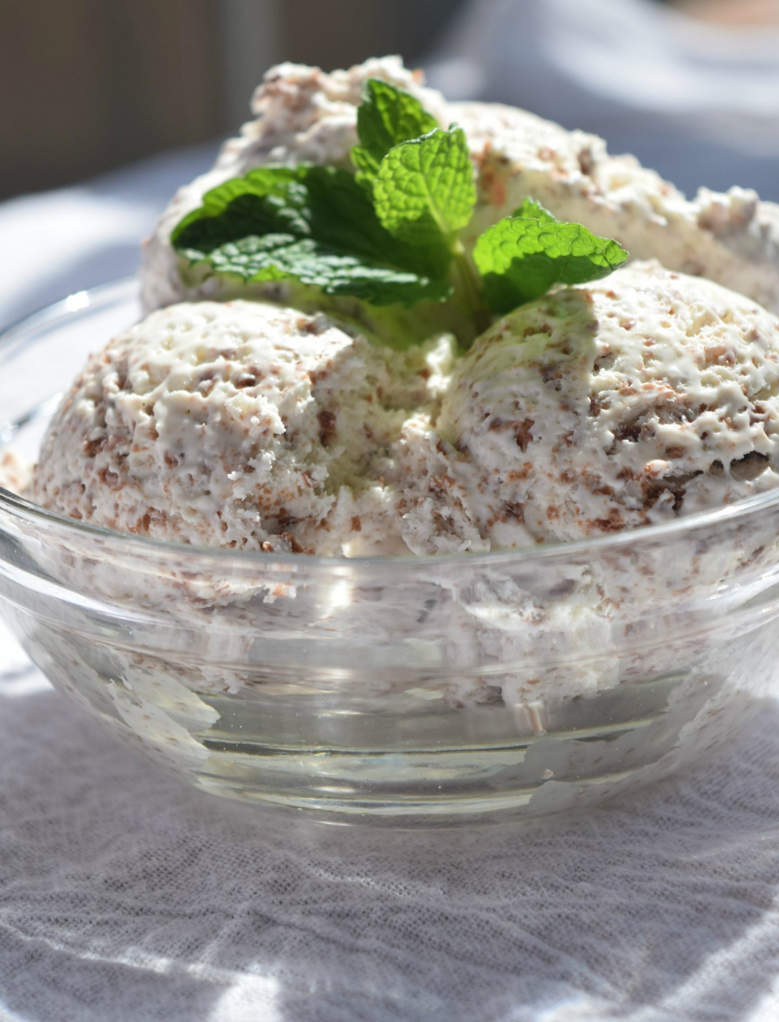 Mint Chocolate Chip Ice Cream - No-Churn
