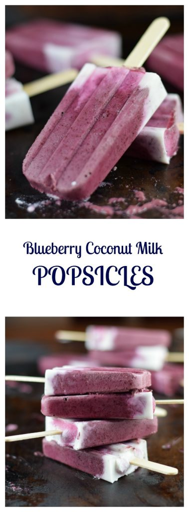 Blueberry Coconut Milk Popsicles